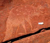 rock-art-fat-tail-kangaroo