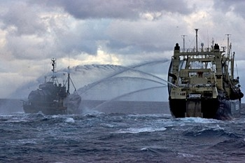 Seashepherd water cannon